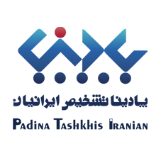 اجرای شبکه داخلی پادینا و راه اندازی active directory