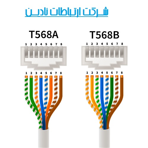 کابل شبکه Cat 6 - انواع کانکتور ها و استانداردهای کانتکور در کابل cat6